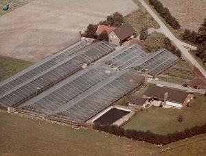 Schon gewachsen: Luftbild Anfang der 1970er Jahre.